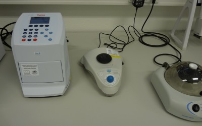 Termocyklér pre direct PCR