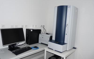 MALDI TOF MS (matrix assisted laser desorption ionization-time of flight mass spectrometry