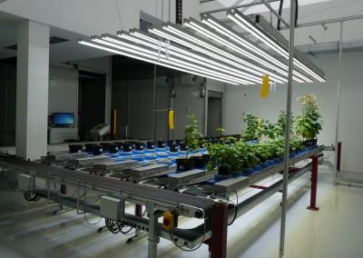 Automatický systém pre fenotypovú parametrizáciu a skríning rastlín