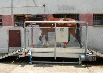 Záťažový regulátor pohybu koňa