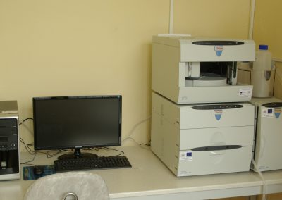 LC Dionex ICS5000 Ion Chromatograph with electrochemical detector